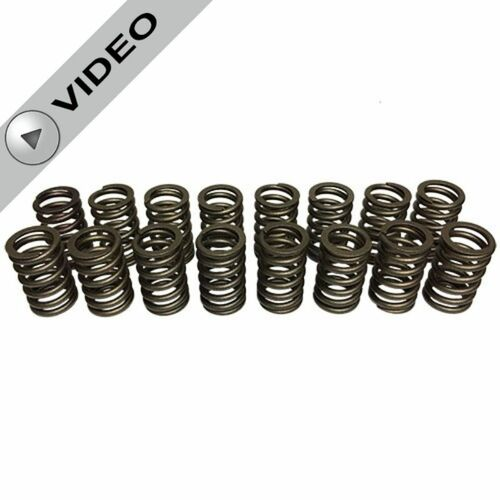 Chevrolet Performance 602 Replacement Valve Springs - Matched Set - Set of 16