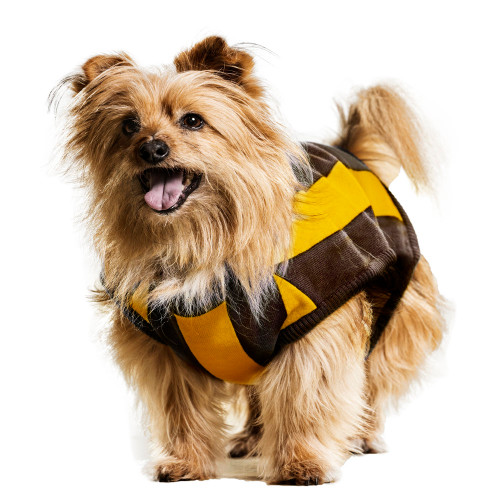 Hawthorn Dog Jumper