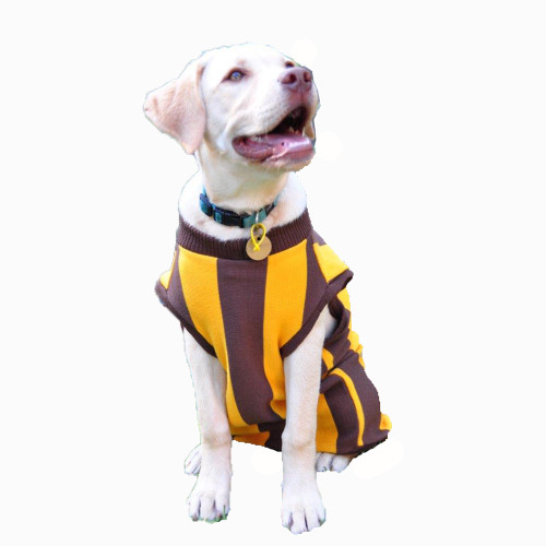 Hawthorn Dog Jumper