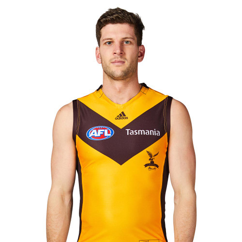 Hawthorn Football Club adidas Legends Guernsey