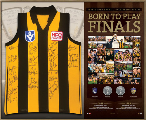Hawthorn Back to Back 1988/1989 Guernsey - Framed & Signed