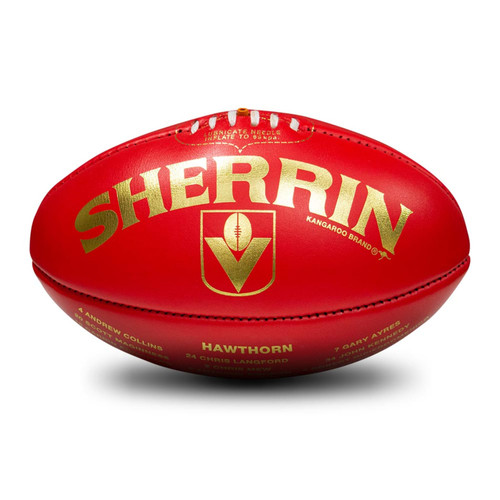 Hawthorn Football Club 1989 Premiers Football
