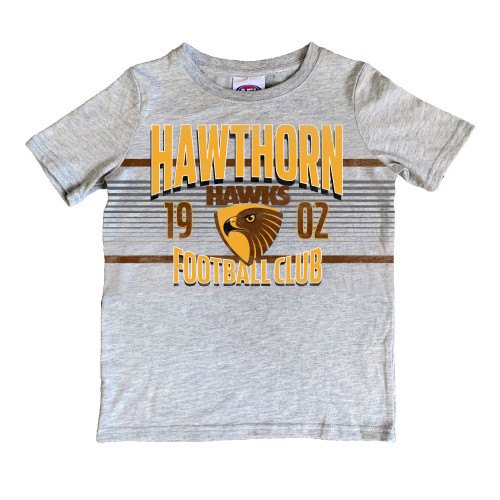 Hawthorn Football Club Youth 2020 Grey Printed Tee