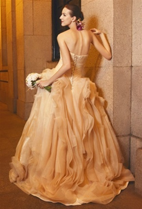 Champagne Wedding Dress with Organza