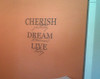Cherish Dream Live Inspirational Vinyl Wall Decal Stickers Wall Letters