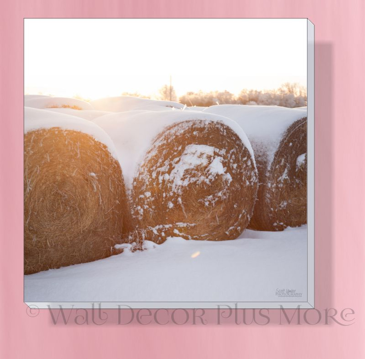 Bales In Snow 12x12 Photo Art Canvas Print Wall Hanging