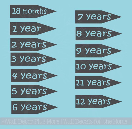 Extra Age Arrows for Wall Growth Chart Decals Track Height on Ruler, 6pc