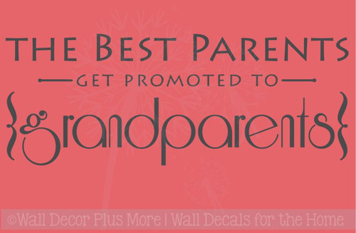 Best Parents Promoted to Grandparents Vinyl Letters Art Wall Decals Stickers Gift