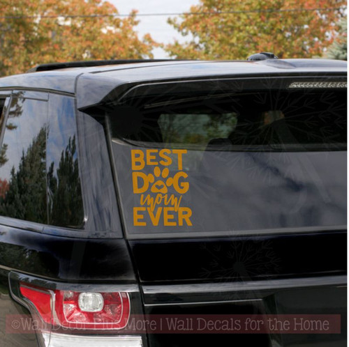 Car Window Decals - Best Dog Mom Ever Vinyl Decals Pet Lover Graphics-Glossy Copper