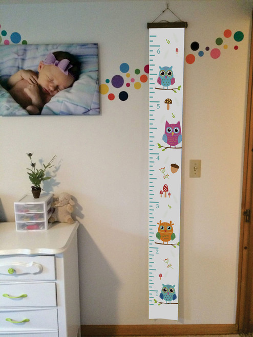 Wood Topped  Colorful Owls Height Ruler Printed on Canvas Growth Chart