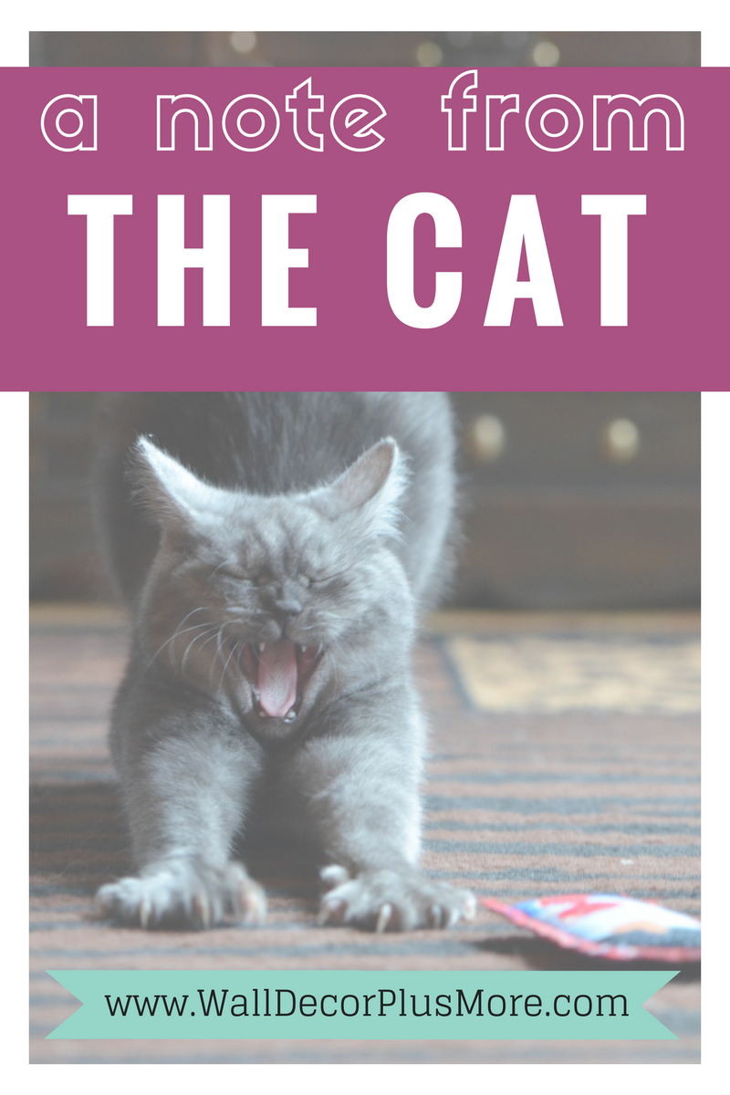 A Note From The Cat--A Funny Letter from your 4-legged Furry Love