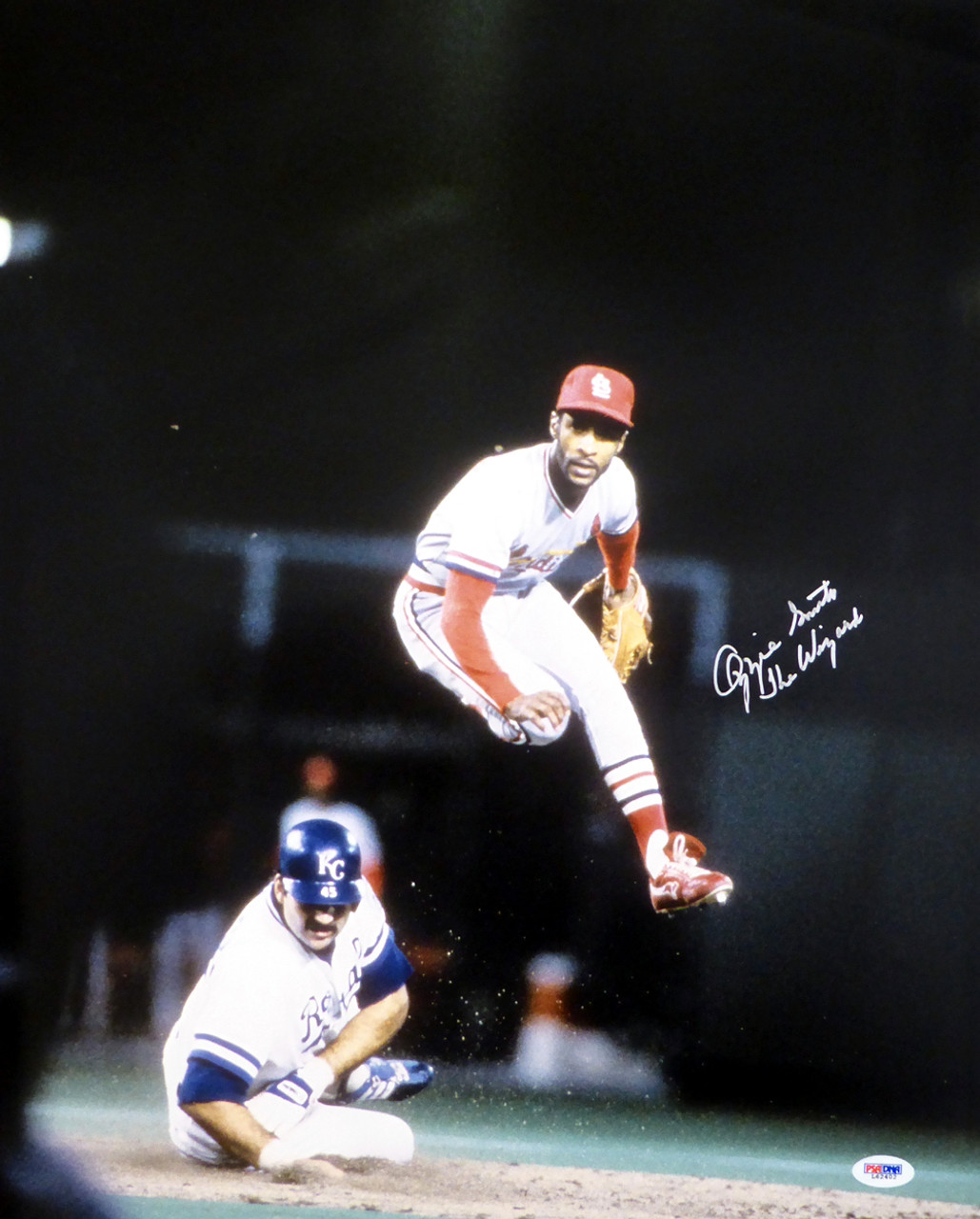best website d179f 0574b Ozzie Smith Autographed St. Louis Cardinals 16x20 Action Photo