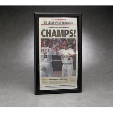 Full Size Newspaper Display Case - Executive