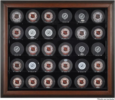 Brown Framed 30 Hockey Puck Display Case