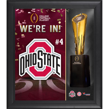 2015 Ohio State Buckeyes Framed Collage