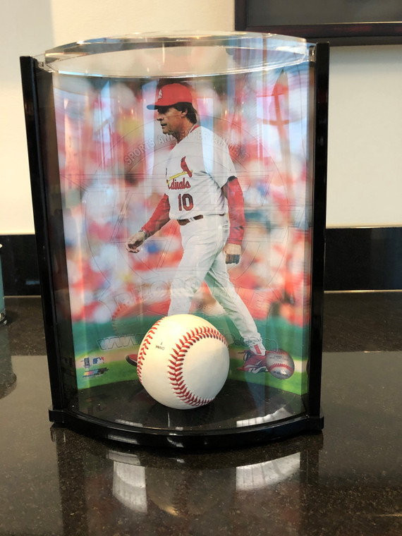 Photo and Ball Curved Display Case