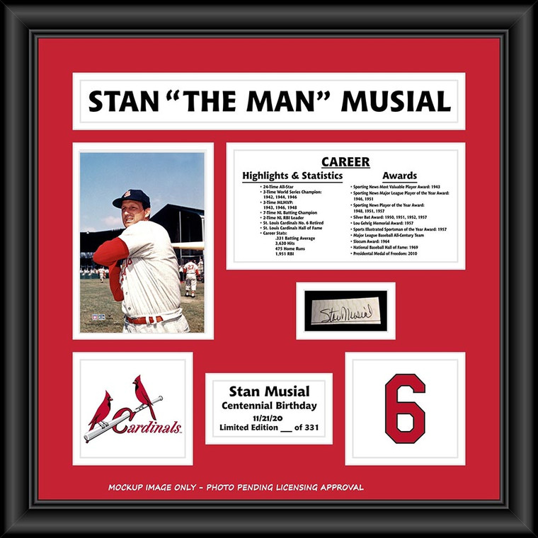 Stan Musial Framed and Matted 19x19 Photo Collage with Cut Signature - Limited Edition of 331