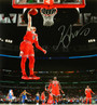 Zach LaVine Signed Chicago Bulls One Hand Dunk Action 16x20 Photo