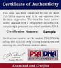 "Pete Rose Cincinnati Reds Autographed Rawlings Bat Big Stick ""75, 76, 80 WS Champs"" PSA/DNA"