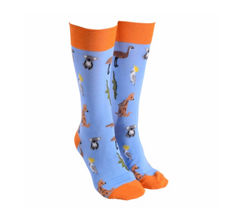 Sock Society Aussie Animals Socks - Blue with Orange (One Size Fits Most Adults)