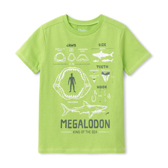 Hatley Megalodon Graphic Tee (Size 4 Sample)