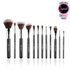 Sigma Beauty 12 pc Essential Brush Kit - Mr. Bunny