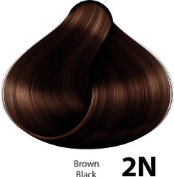Naturtint 2N Brown Black Organic Permanent Hair Colorant (5.98 fl. oz. / 170 mL)