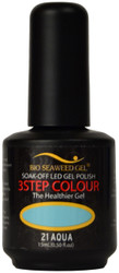 Bio Seaweed Gel Aqua (UV / LED Polish)