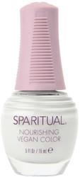 Spa Ritual Tranquility