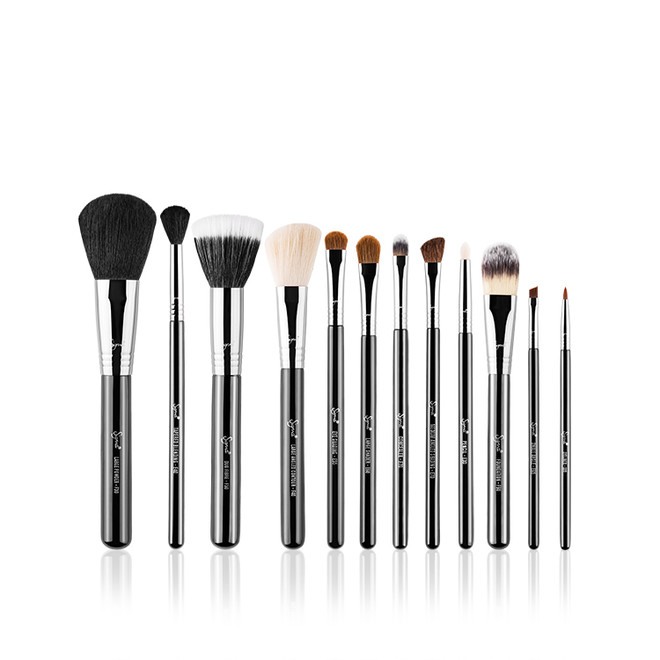 12 pc Essential Brush Kit by Sigma Beauty
