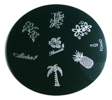 image plate m29 hawaii pineapple tree flower
