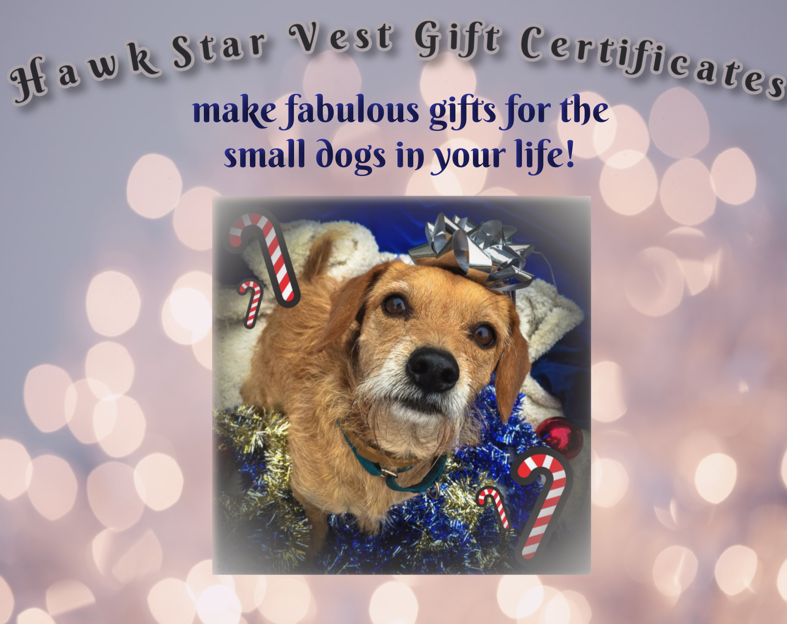 holiday-gift-certificate-trevor.png
