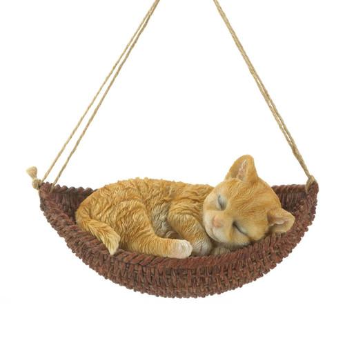 napping kitten on hammock