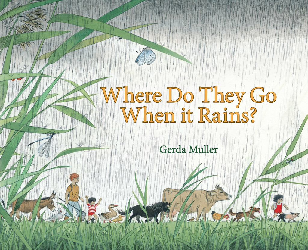 Where Do They Go When it Rains? - Cover