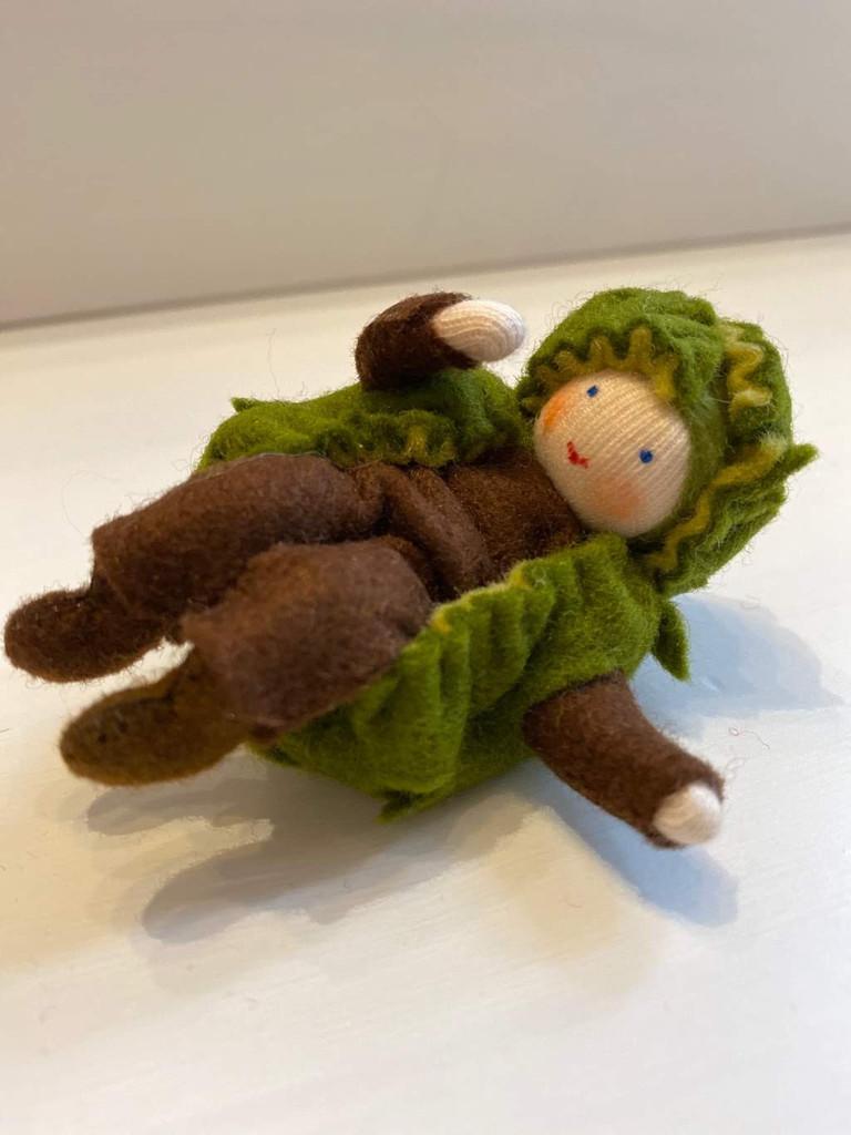 Chestnut Elf - Flower Children