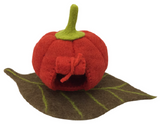 Papoose Pumpkin House with Mat (PP259)