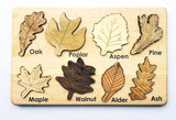 Leaf Puzzle Including Fall Colours
