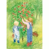 Apple Harvest - Postcard