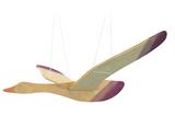 Ostheimer Mobile - Bird Multicolour