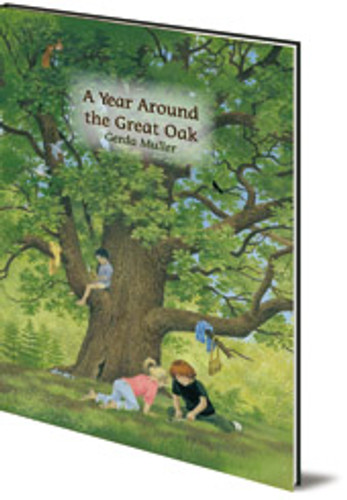 A Year Around The Great Oak