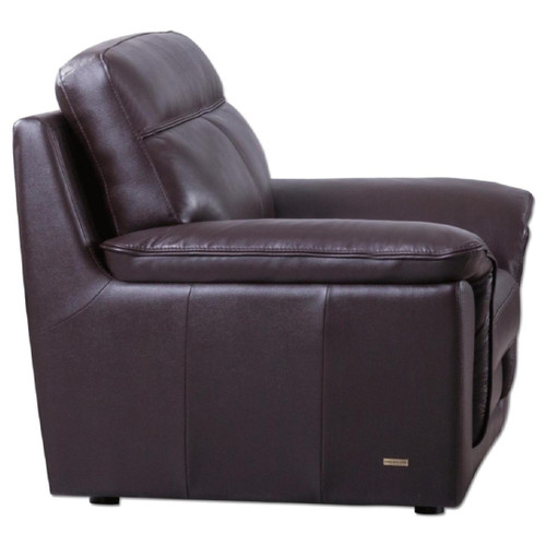 S210 Brown Chair