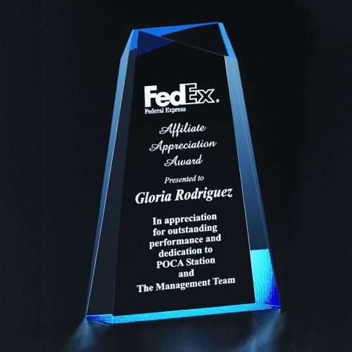 Wedge Facet Award