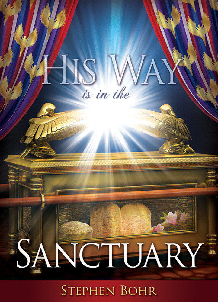 His Way Is In The Sanctuary #25 MP3D - Digital Download