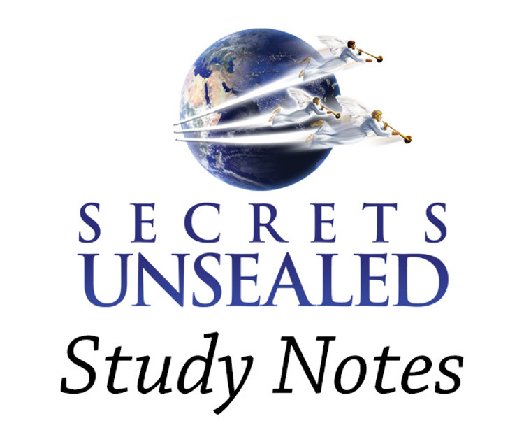 Study Notes Bundles