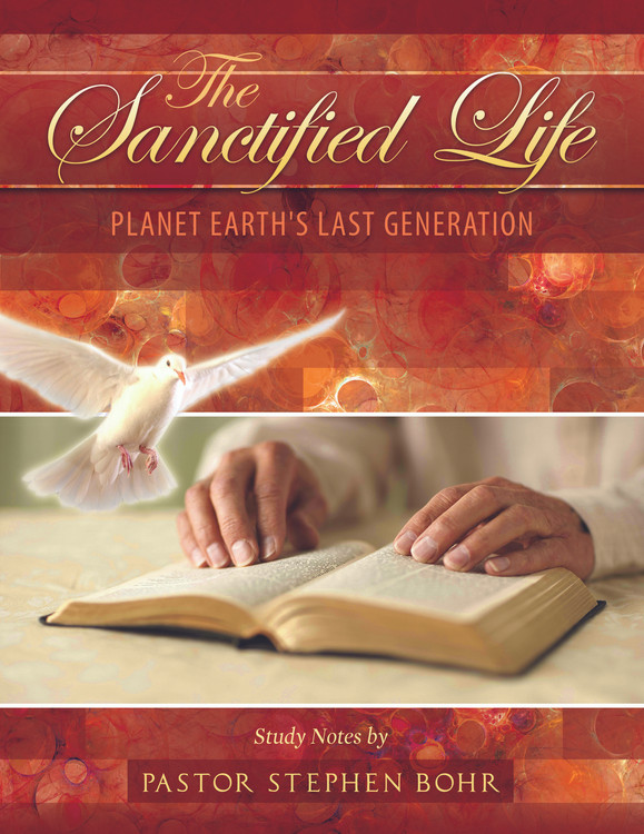 The Sanctified Life - PDF Download