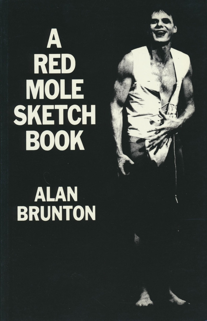 Red Mole Sketchbook, A