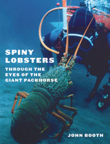Spiny Lobsters: Through the Eyes of the Giant Packhorse