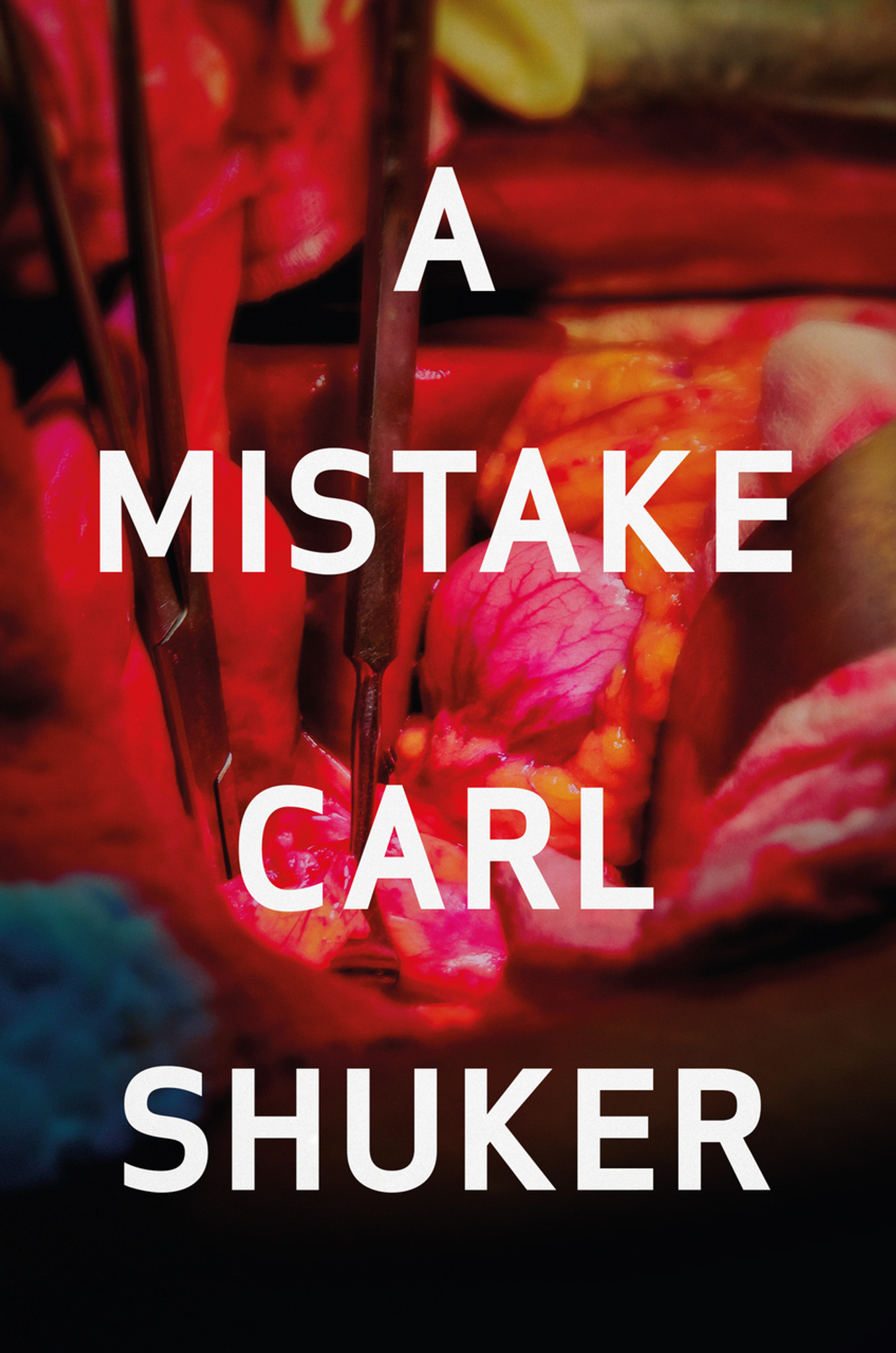 Image result for a mistake carl shuker