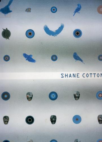 Shane Cotton