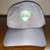 Shield Microlight Cap in Gry